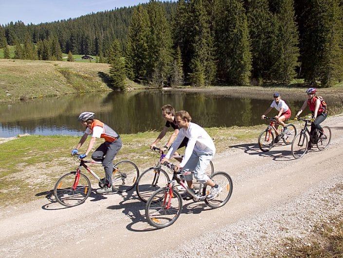 Sommer - Radfahren Sonnenalm Winklmoos