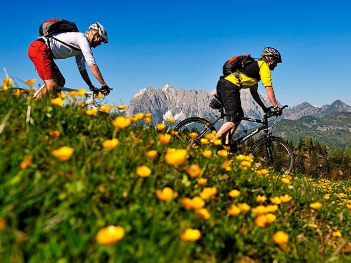 Sommer - Fahrrad-Touren Sonnenalm Winklmoos