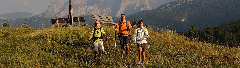 Sommer - Wandern rund um die Sonnenalm Winklmoos