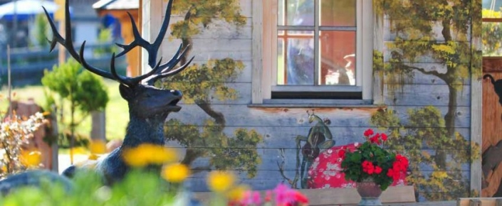 Aktivitäten Sommer - Gartenimpressionen