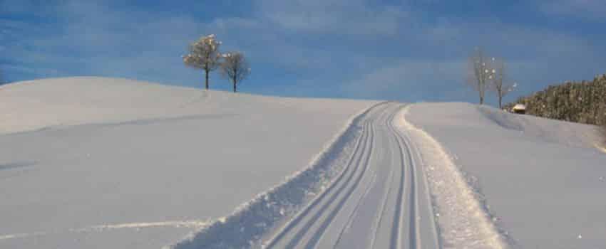 Aktivitäten Winter - Loipen