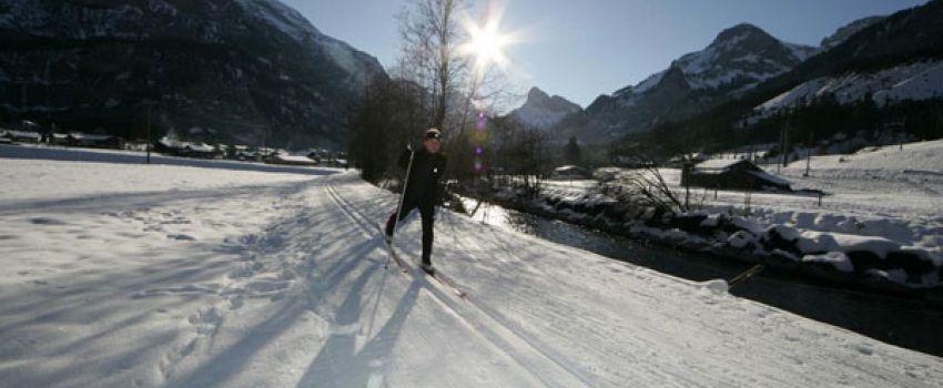 Aktivitäten Winter - Langläufer im Schnee